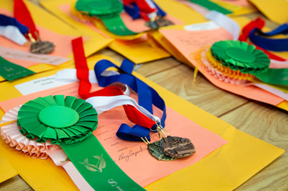 UIL Elementary A+ Academics competition ribbons