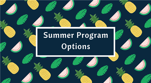 Summer Program Options